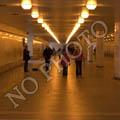 Bodrum-Torba